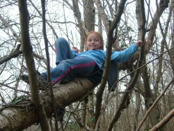 climbing-trees.jpg